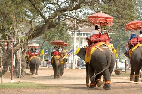 象の背中に乗ってゆっくりお散歩