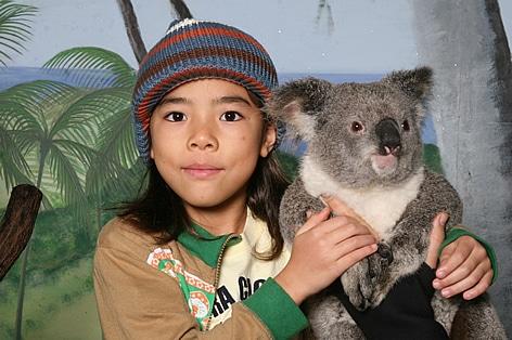 コアラを抱っこしての記念写真/イメージ