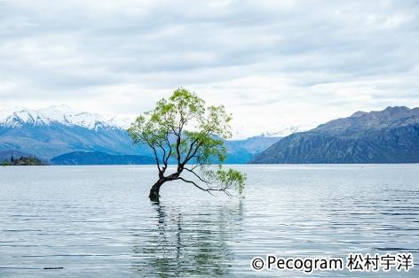 ワナカ湖(11月出発以降に立ち寄り)